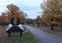 Radviliškio miesto parko medžiai dar nėra pasmerkti